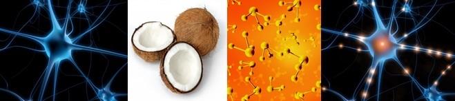 Coconut Ketones